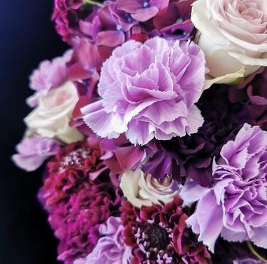 Fleurs de saison (autour du Parme)