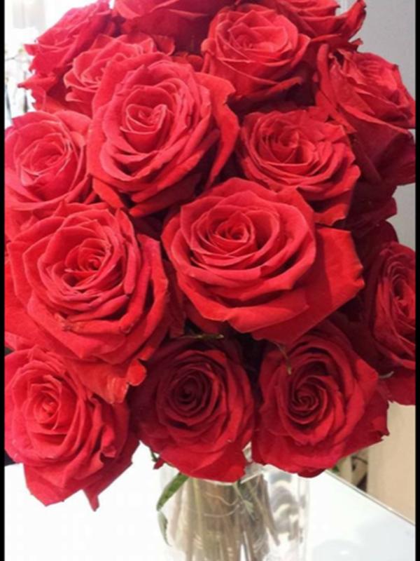 La Red Naomie - Rose rouge